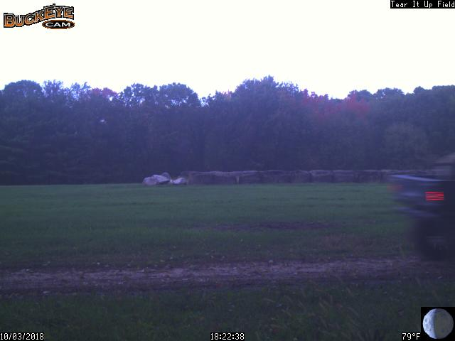 Hunting preserve trail cam still